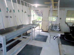 Processing room at Healthy Hen Farms.